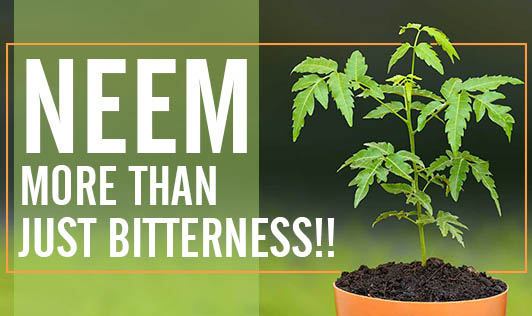 Neem- More Than Just Bitterness!!