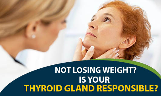 Not losing weight? Is your Thyroid Gland Responsible?