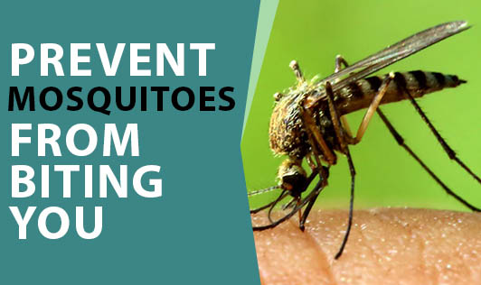 Prevent Mosquitoes from Biting You