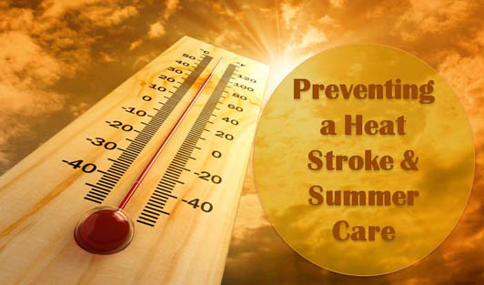 Summer Care: Preventing a Heat Stroke