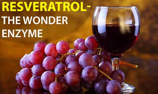 Resveratrol - The Wonder Enzyme