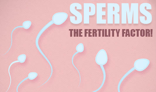 Sperms, The Fertility Factor!