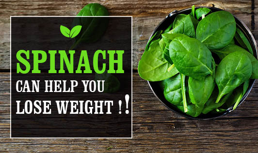 Spinach Can Help You Lose Weight !!