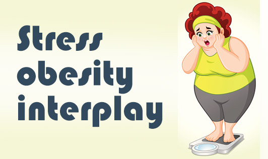 Stress Obesity Interplay
