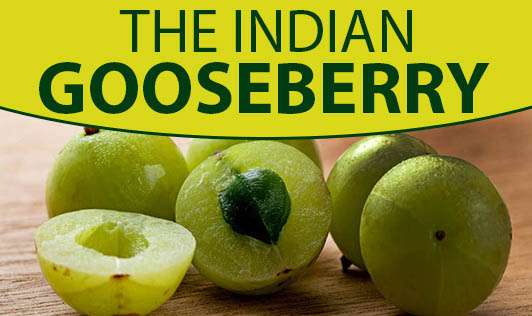 The Indian Gooseberry