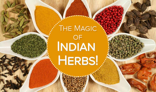 The Magic of Indian Herbs!