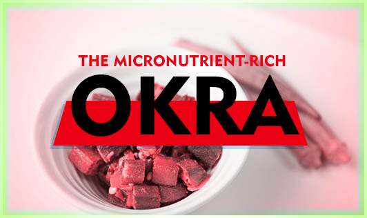 The micronutrient-rich Okra