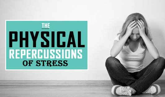 The physical repercussions of stress