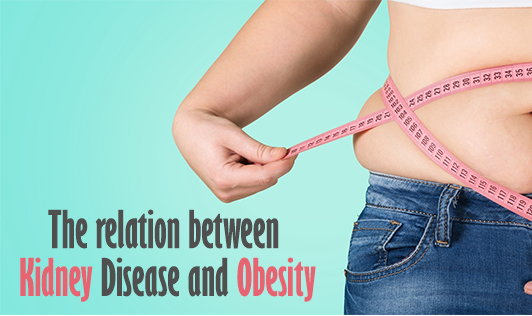 The relation between Kidney Disease and Obesity