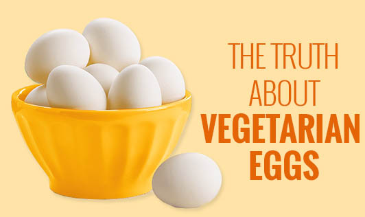 The truth about vegetarian eggs