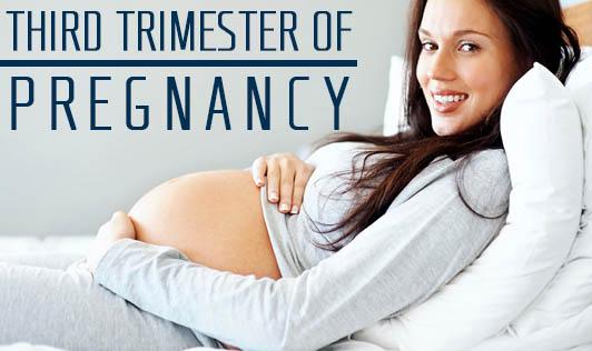 Third Trimester of Pregnancy