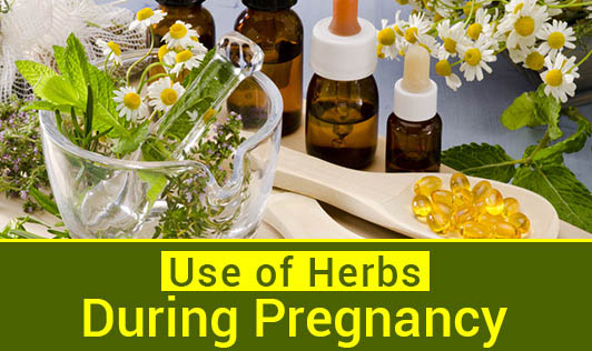 Use of Herbs during Pregnancy