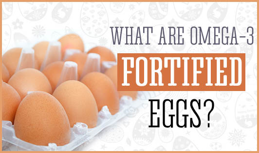 What are Omega-3 fortified eggs?