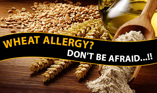 Wheat Allergy? Don't Be Afraid...!!