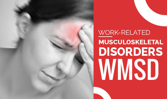 Work-Related Musculoskeletal Disorders (WMSD)