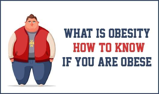 What Is Obesity How To Know If You Are Obese On The Wellness Corner