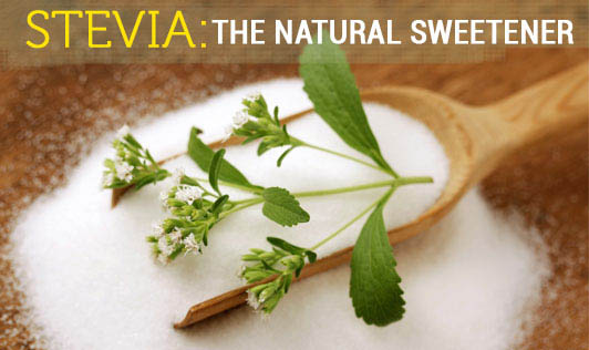 Stevia: the natural Sweetener